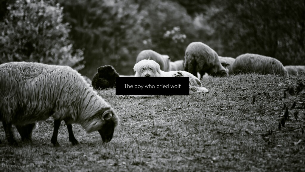 The boy who cried wolf Photo by hp koch on Unsp...