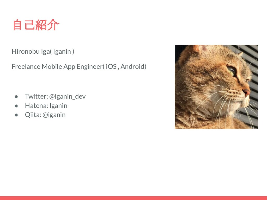 自己紹介 Hironobu Iga( Iganin ) Freelance Mobile Ap...