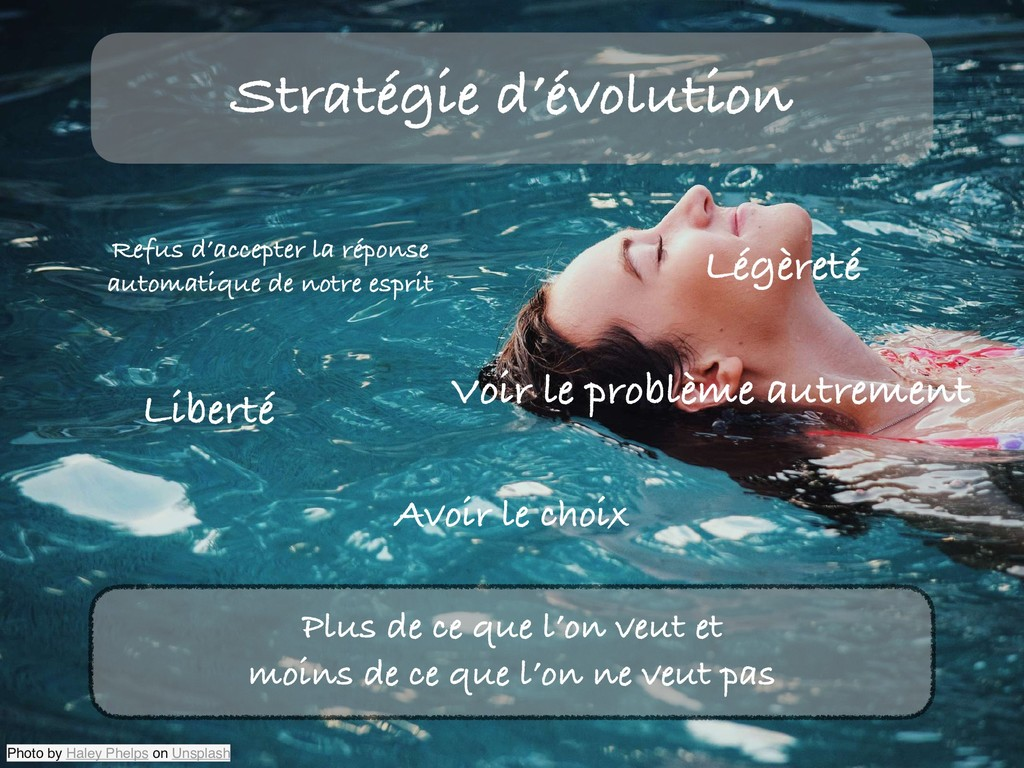 Stratégie d'évolution Photo by Haley Phelps on ...