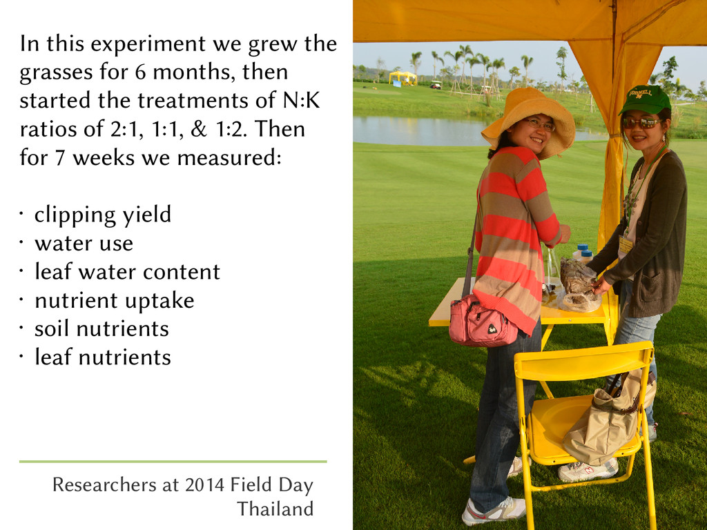 In this experiment we grew the grasses for 6 mo...