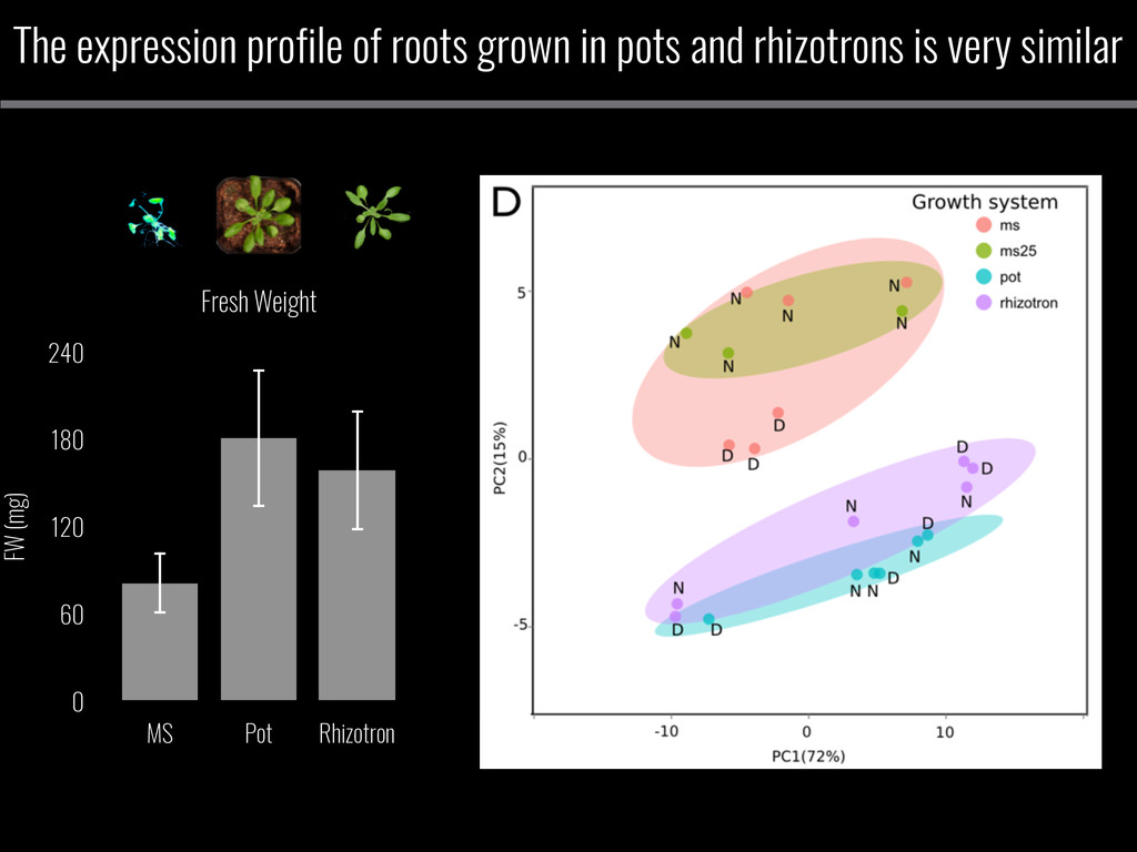 The expression profile of roots grown in pots a...