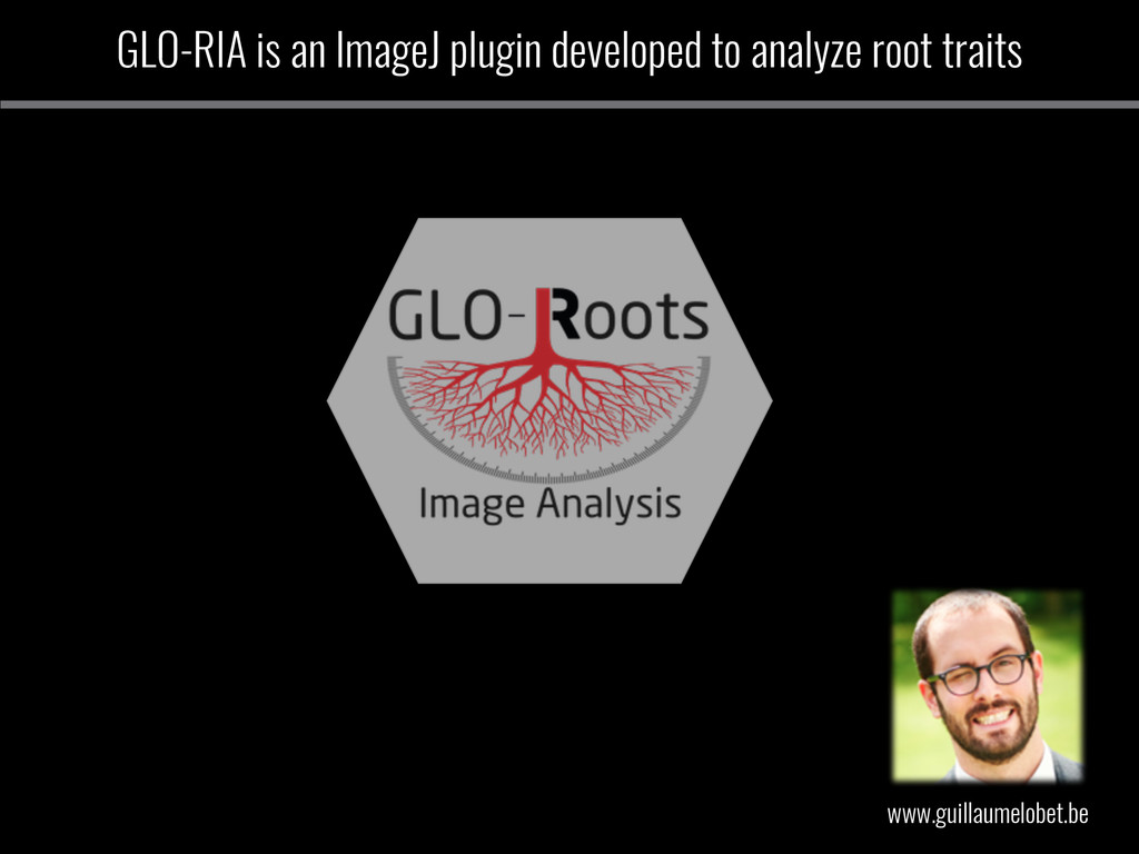 GLO-RIA is an ImageJ plugin developed to analyz...