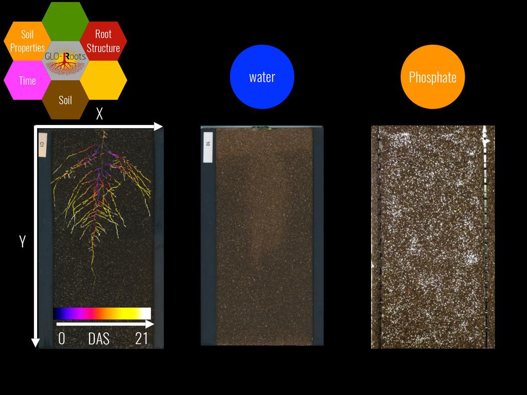 X Y DAS 0 21 Soil Soil Properties Time Root Str...