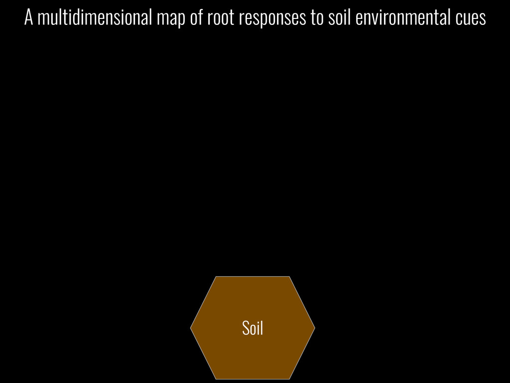 Soil A multidimensional map of root responses t...