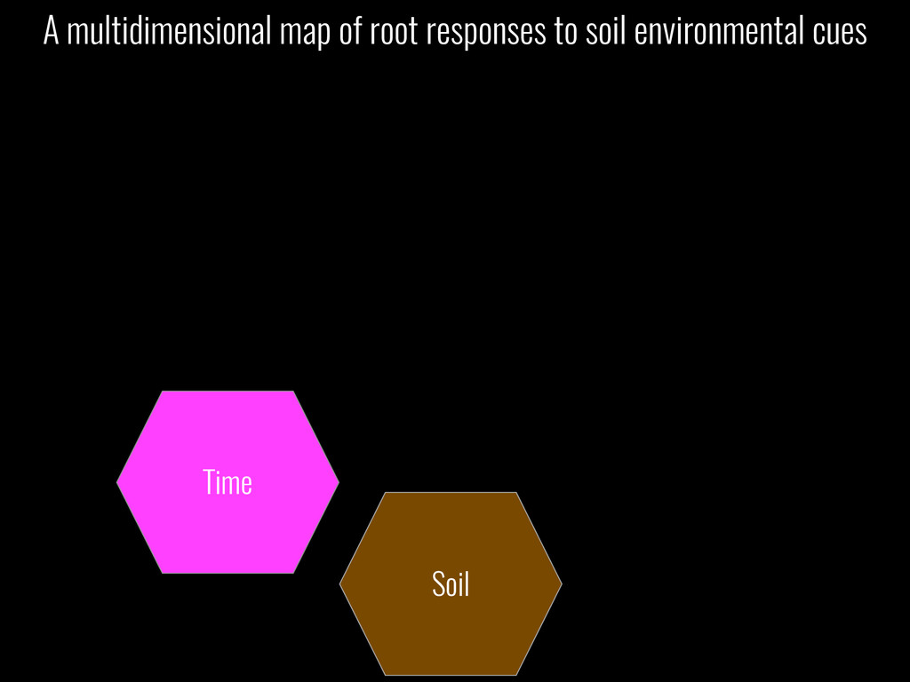 Soil Time A multidimensional map of root respon...