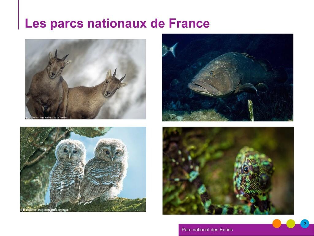 3 Parc national des Ecrins Les parcs nationaux ...