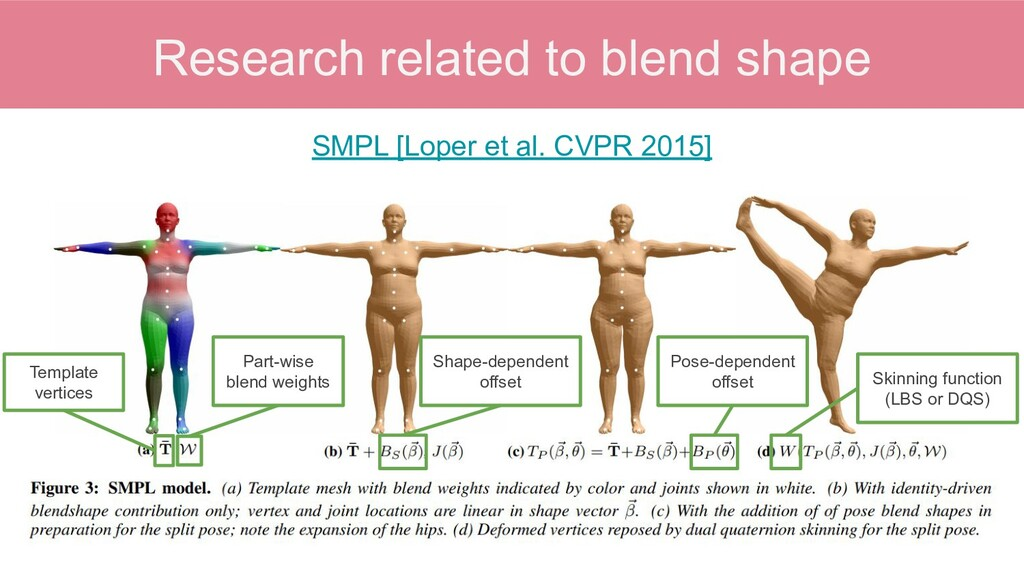 Research related to blend shape SMPL [Loper et ...