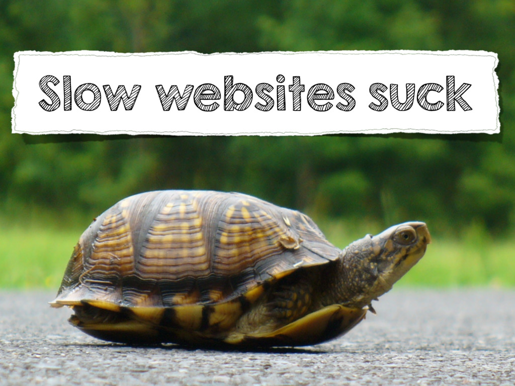Slow websites suck