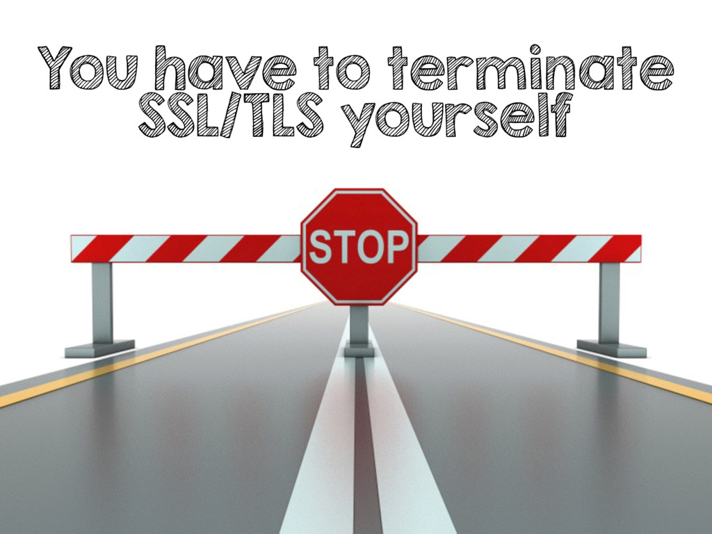 You have to terminate SSL/TLS yourself