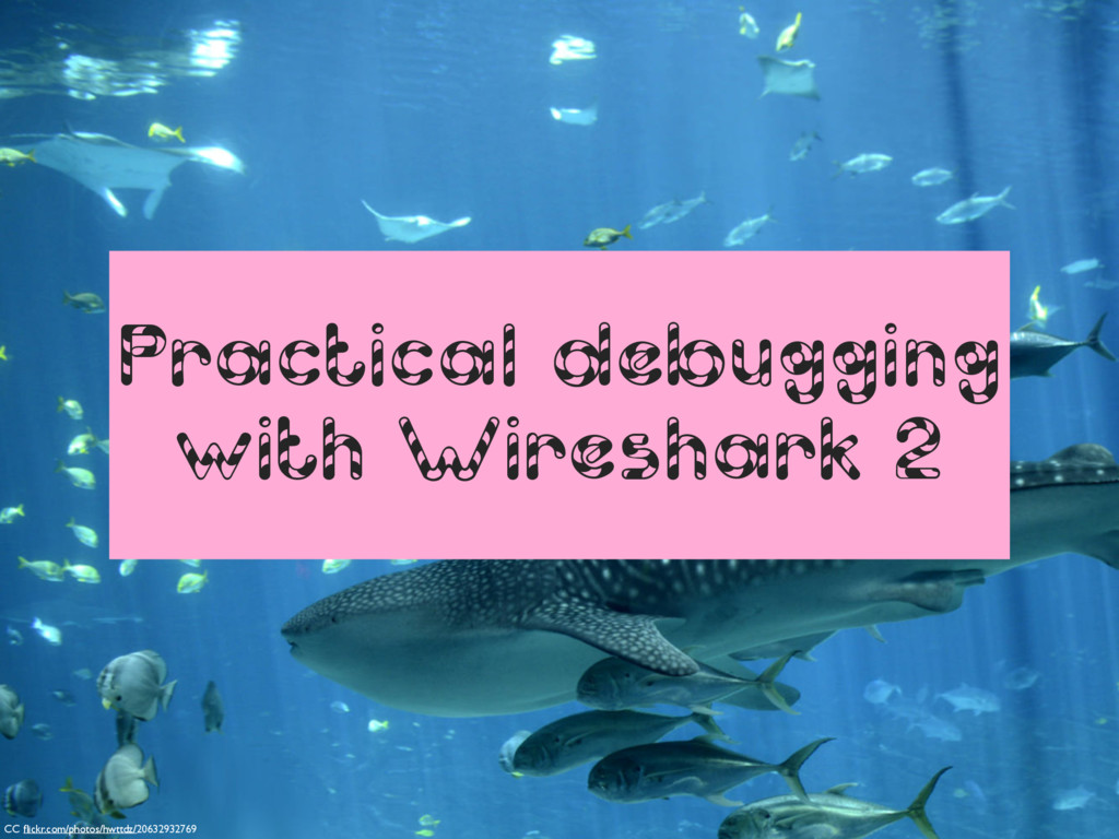 Practical debugging with Wireshark 2 CC flickr.c...