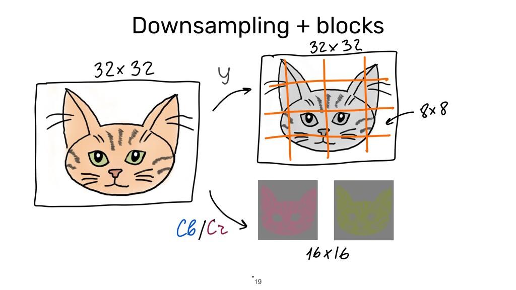 19 Downsampling + blocks