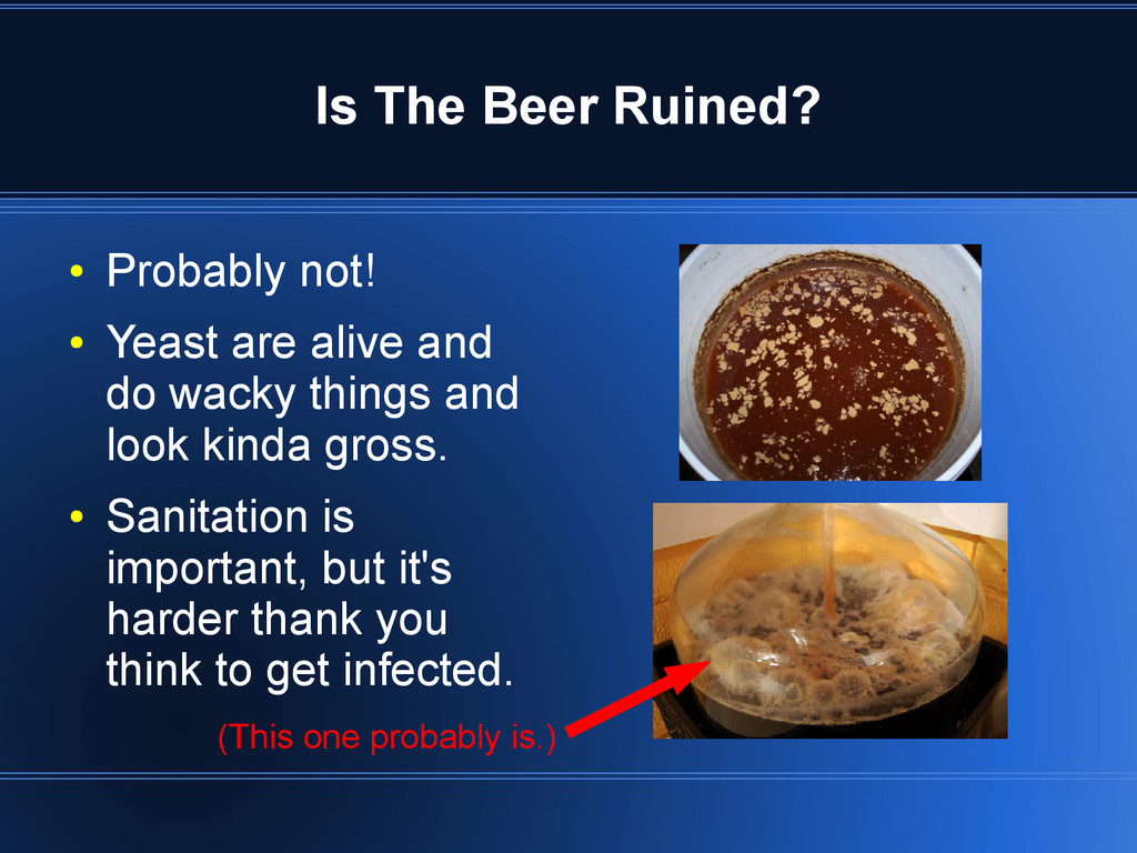 Is The Beer Ruined? ● Probably not! ● Yeast are...