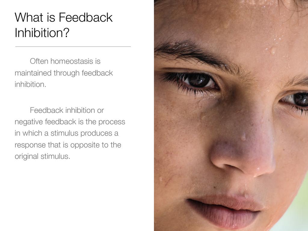What is Feedback Inhibition? Often homeostasis ...