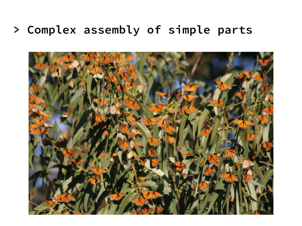 > Complex assembly of simple parts