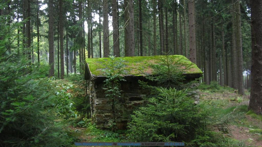 """""""dem Waldschrat sein Haus"""" by Huhnbeauftragter ..."""