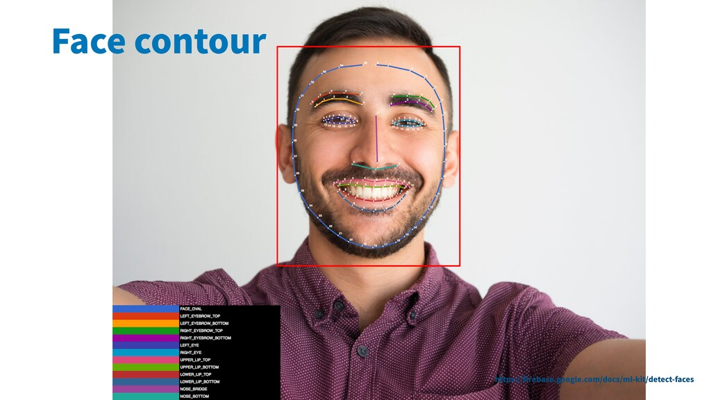 Face contour https://firebase.google.com/docs/ml...