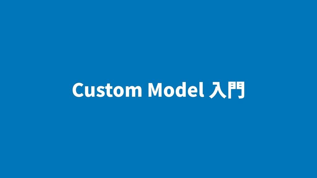 Custom Model ⼊⾨