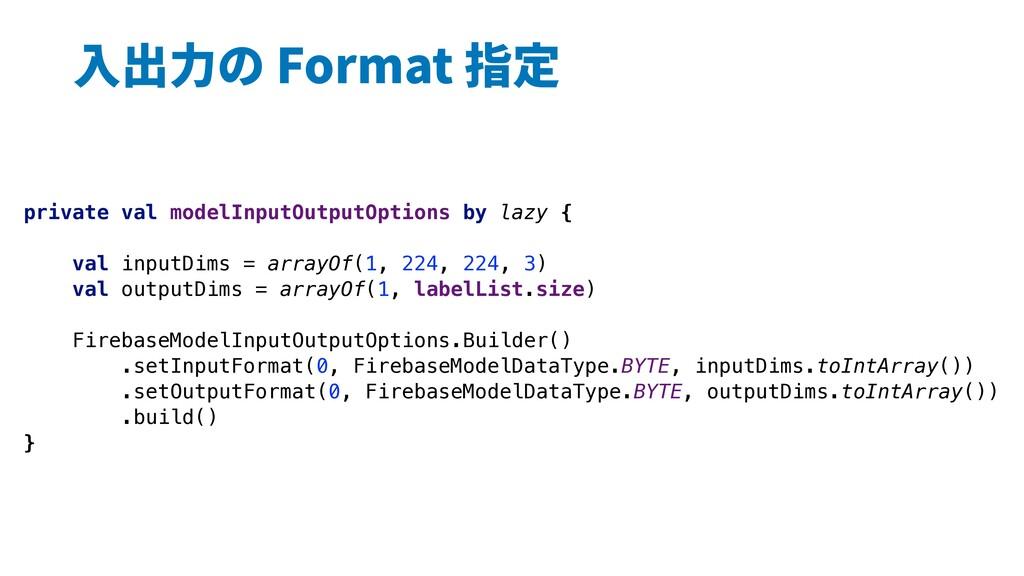 ⼊出⼒の Format 指定 private val modelInputOutputOpti...
