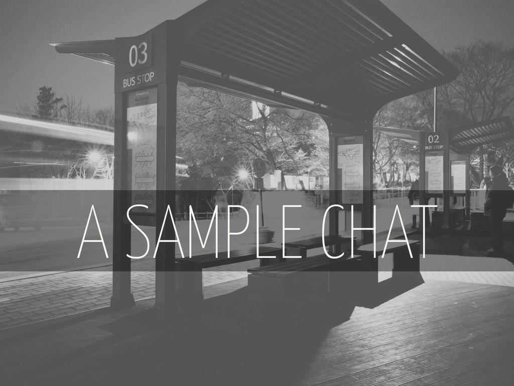 A SAMPLE CHAT