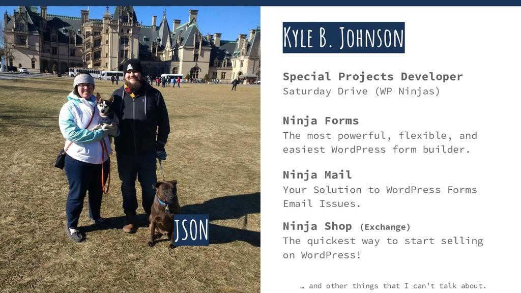 Kyle B. Johnson Special Projects Developer Satu...