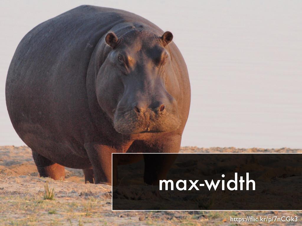 max-width https://flic.kr/p/7nCGk3