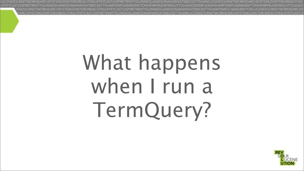 What happens when I run a TermQuery?