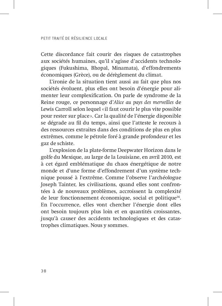 PETIT TRAITÉ DE RÉSILIENCE LOCALE 38 Cette disc...