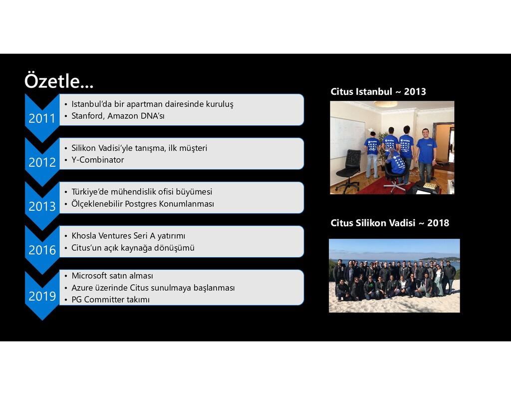 Özetle... Citus Istanbul ~ 2013 Citus Silikon V...