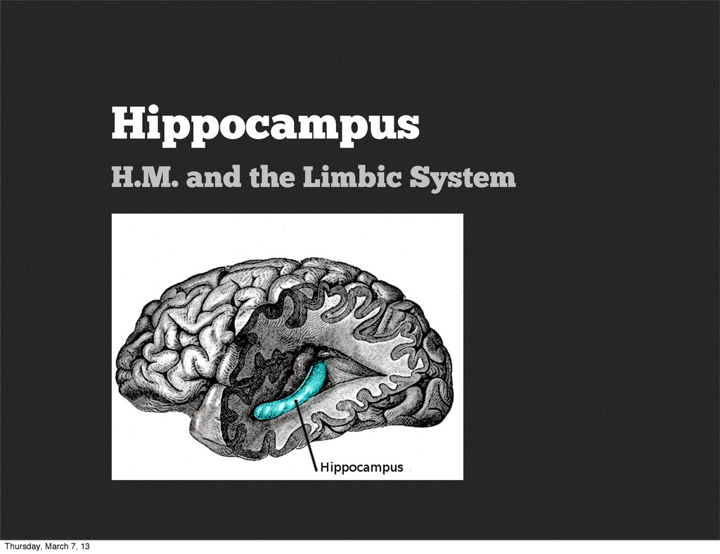 Hippocampus H.M. and the Limbic System Thursday...
