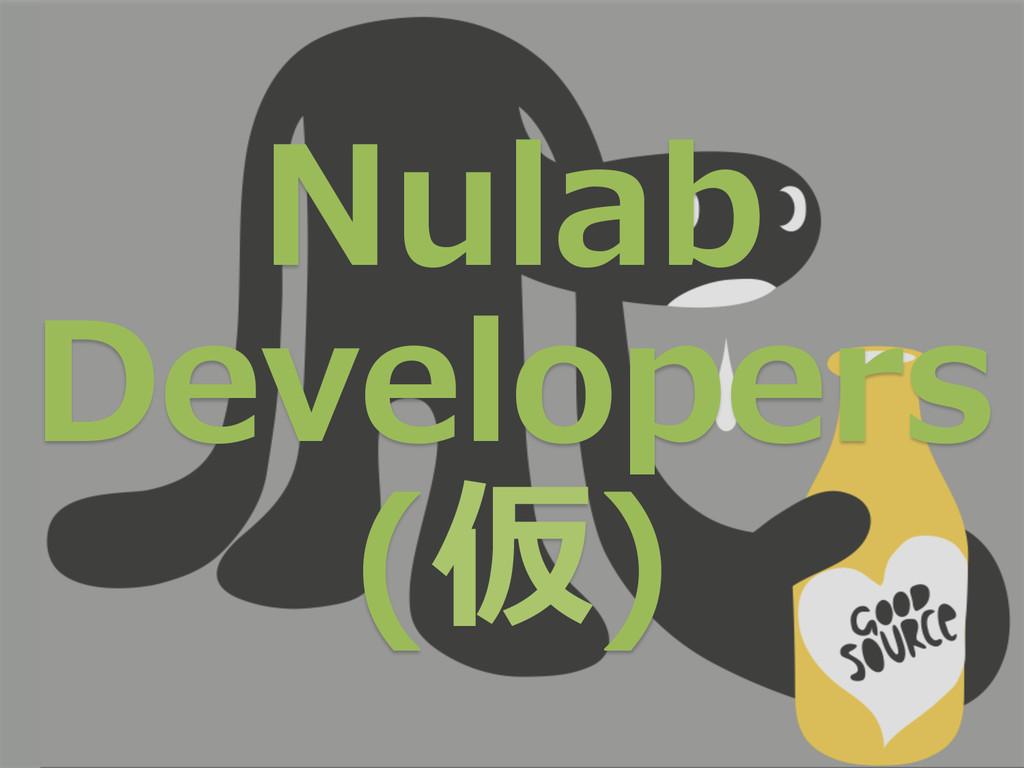 Nulab  Developers (仮)