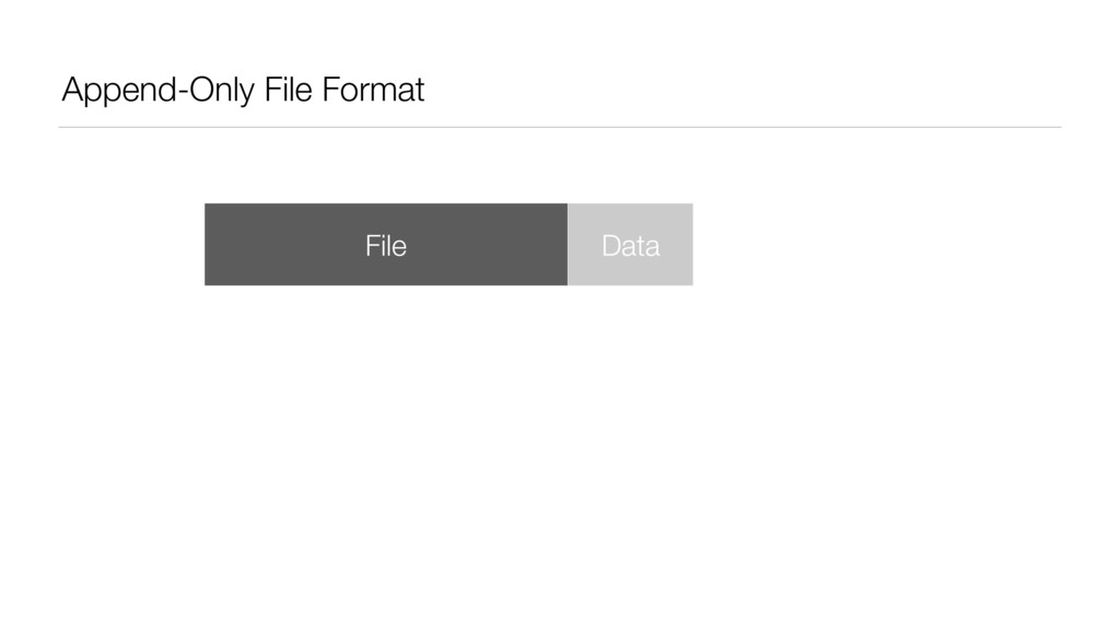 Append-Only File Format File Data