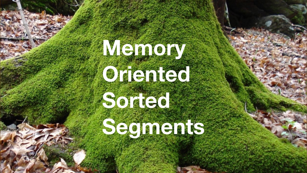 Memory Oriented Sorted Segments