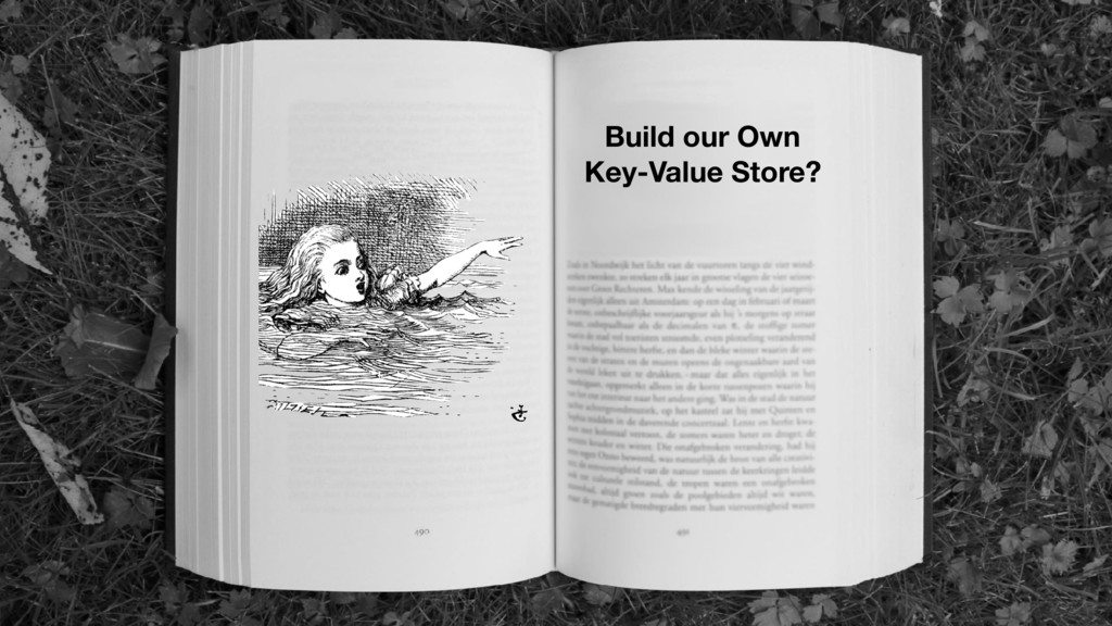 Build our Own Key-Value Store?