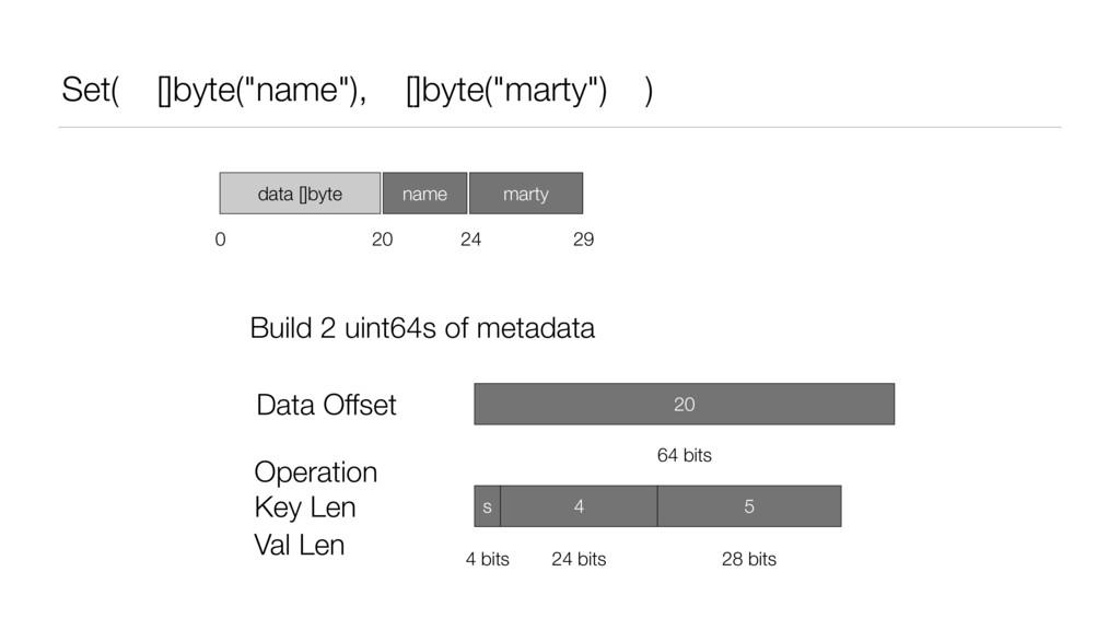 "Set( []byte(""name""), []byte(""marty"") ) data []b..."
