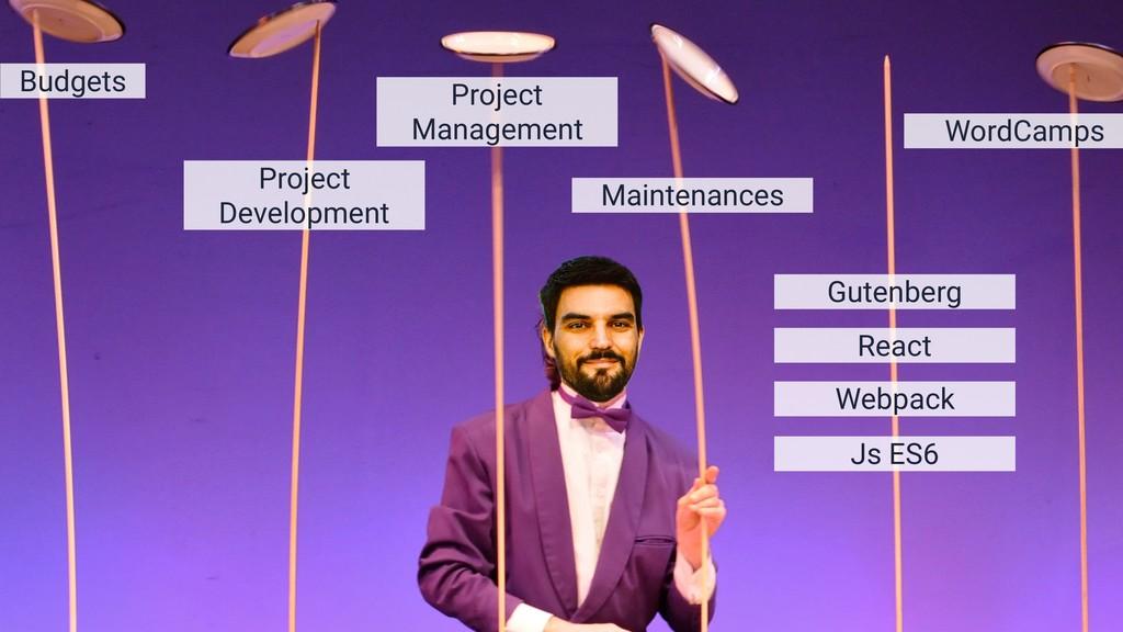Budgets Project Development Project Management ...