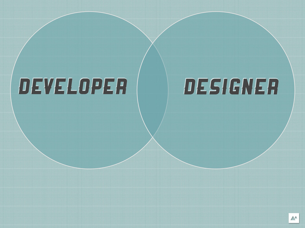 DEVELOPER DESIGNER