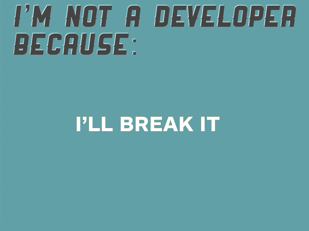 I'M NOT A DEVELOPER BECAUSE: I'LL BREAK IT