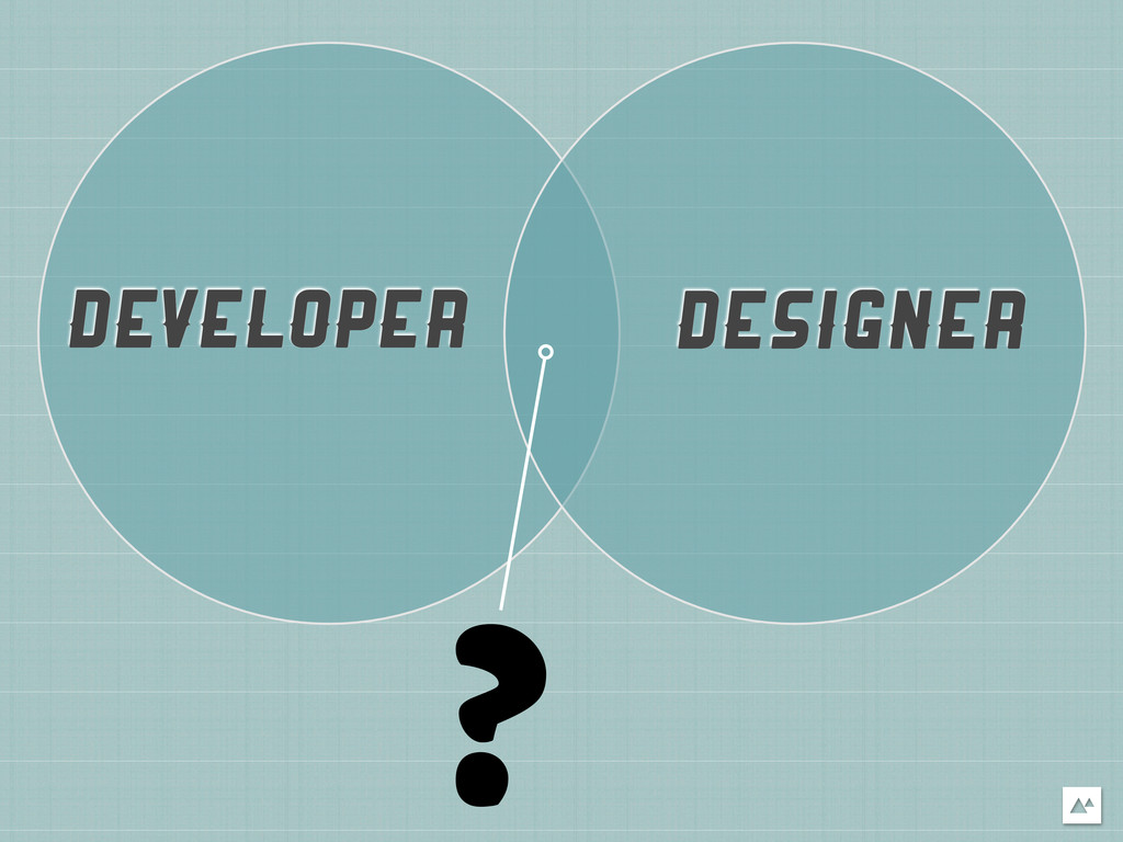 DEVELOPER DESIGNER ?