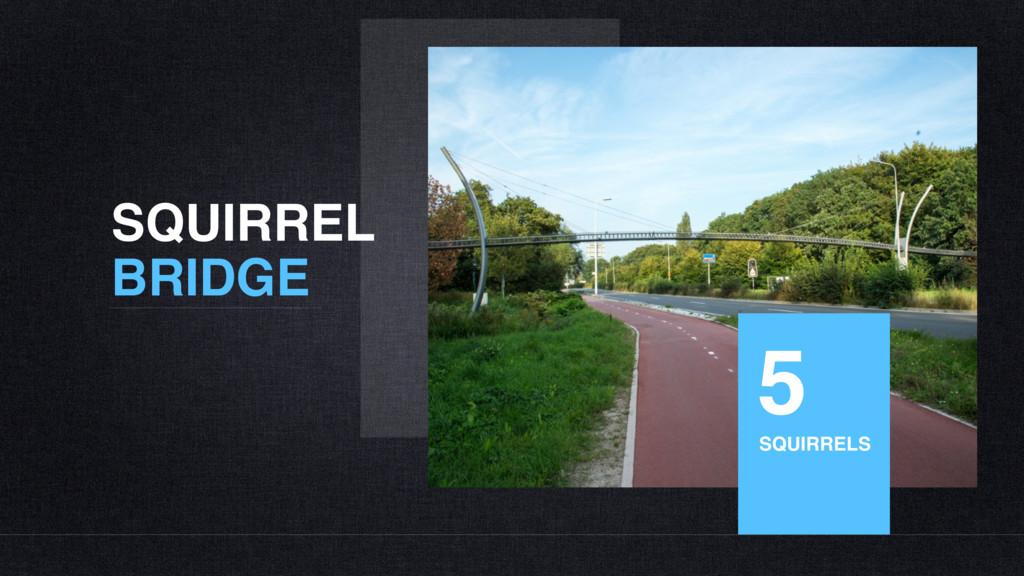 SQUIRREL BRIDGE 5 SQUIRRELS