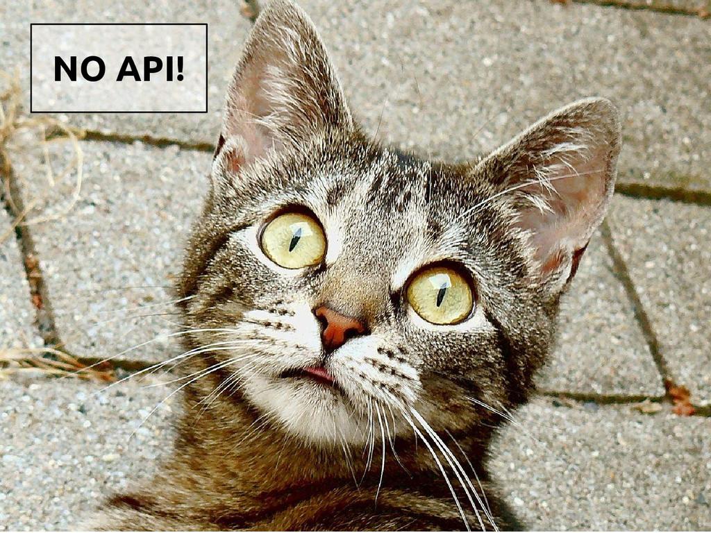 NO API!