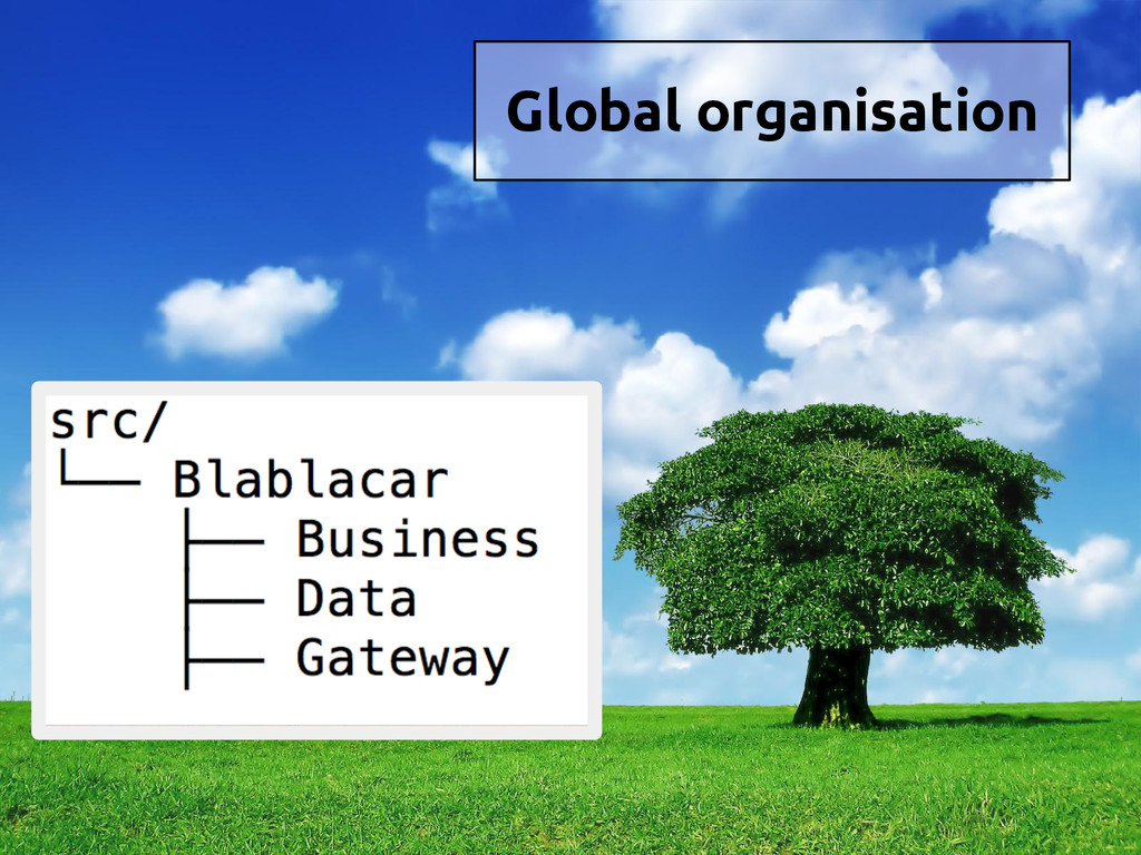 Global organisation