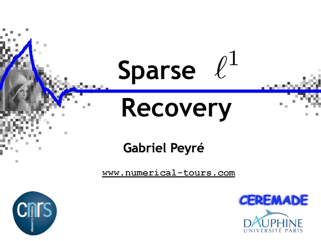Recovery Gabriel Peyré www.numerical-tours.com ...