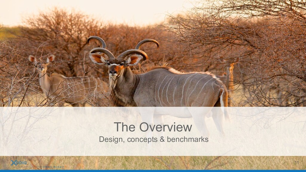 The Overview Design, concepts & benchmarks 11