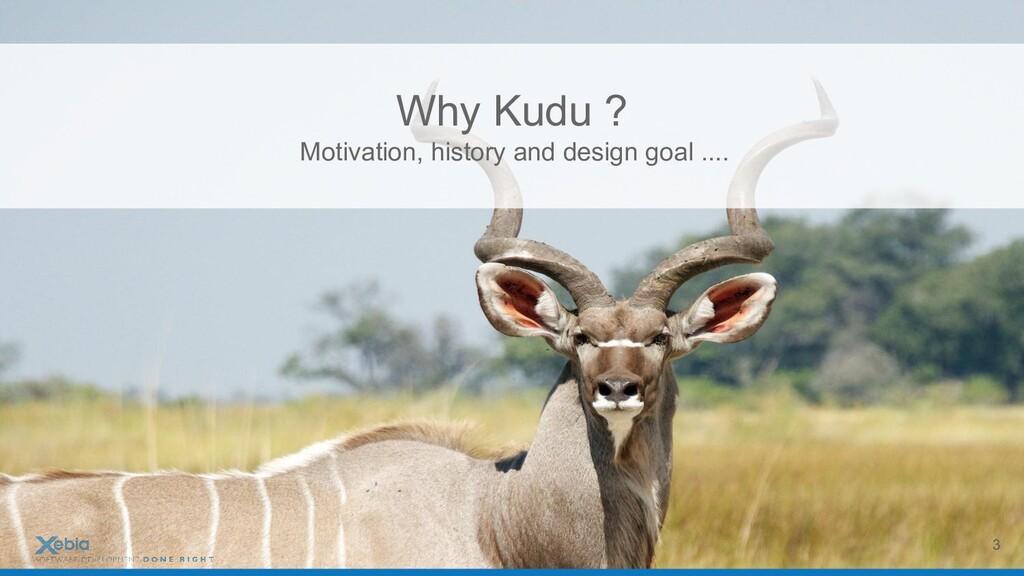 Why Kudu ? Motivation, history and design goal ...