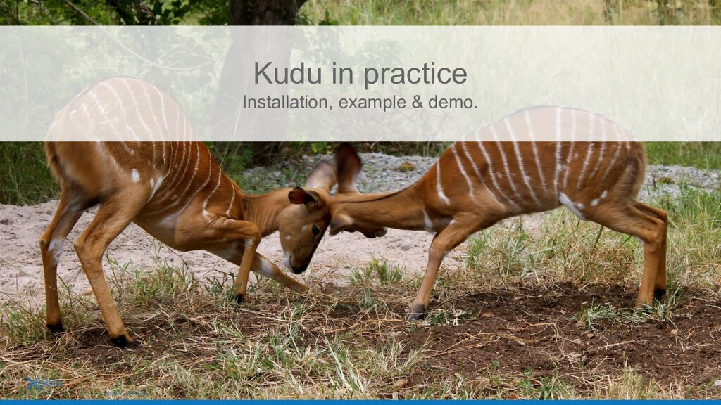 Kudu in practice Installation, example & demo. ...