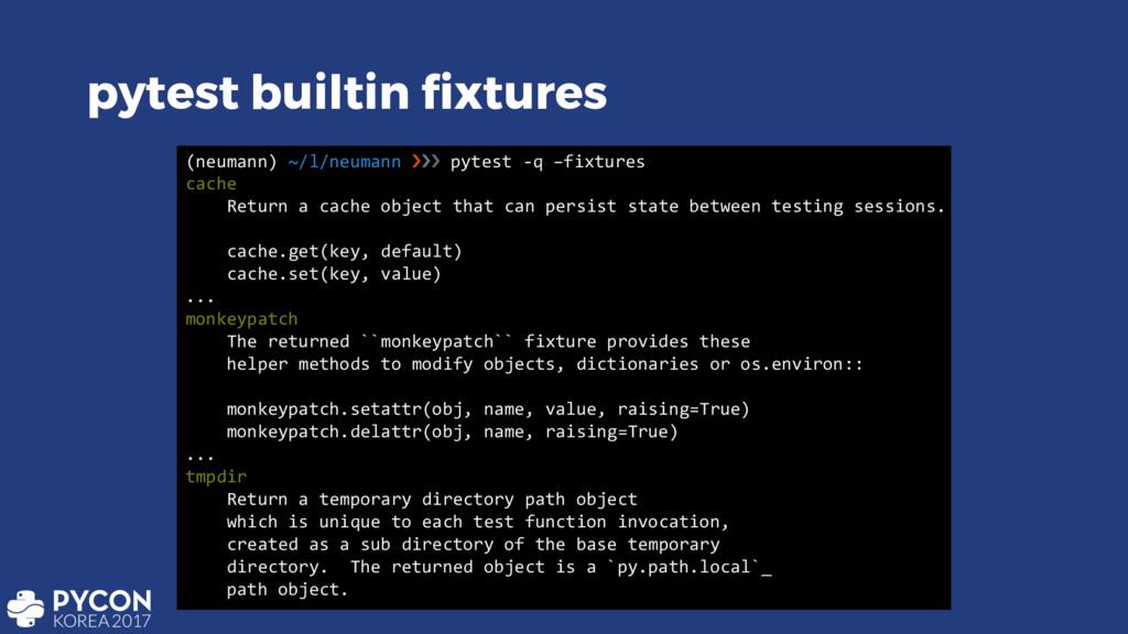 pytest builtin fixtures (neumann) ~/l/neumann ›...
