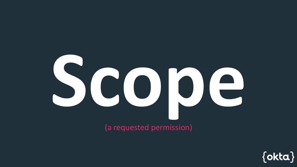 Scope (a requested permission)