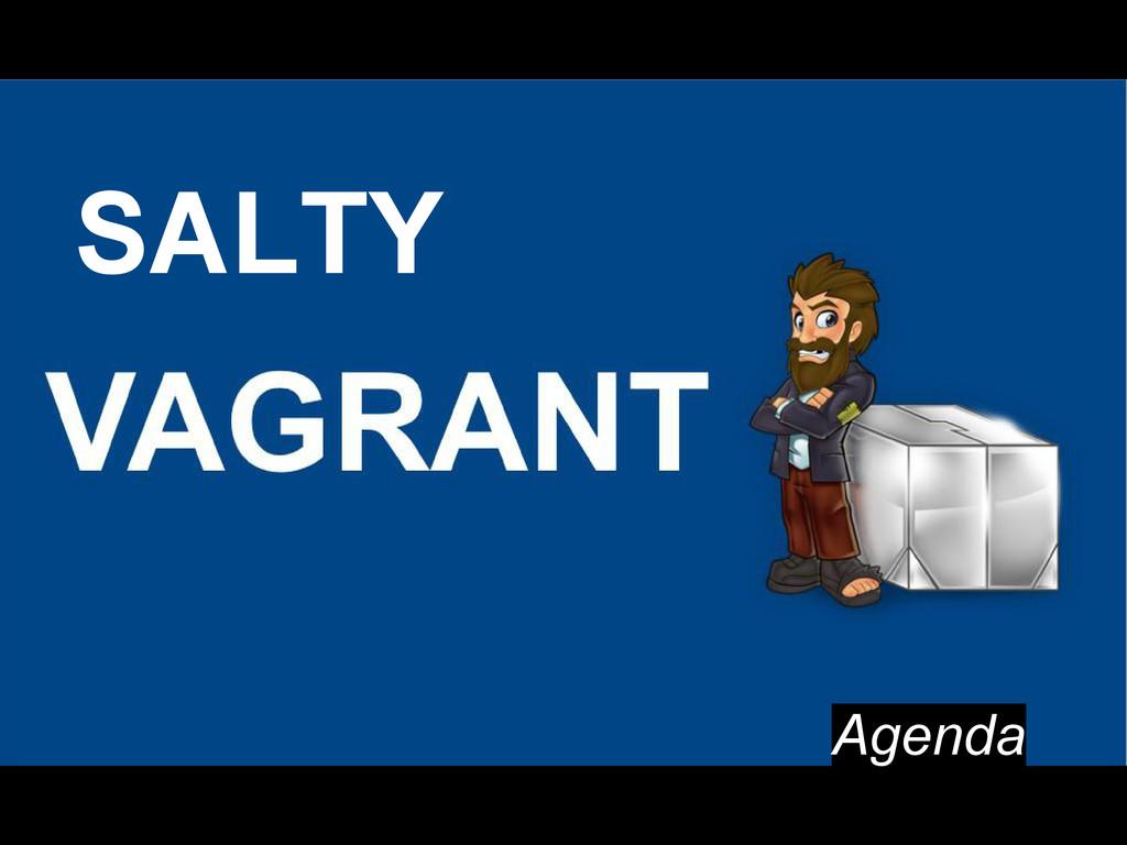 Agenda SALTY