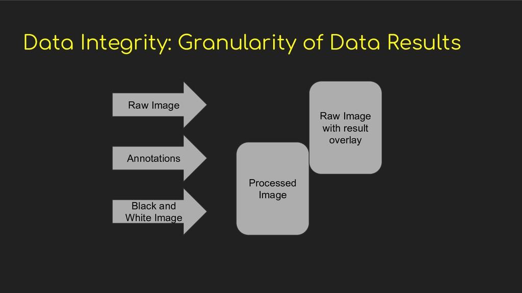 Data Integrity: Granularity of Data Results Raw...