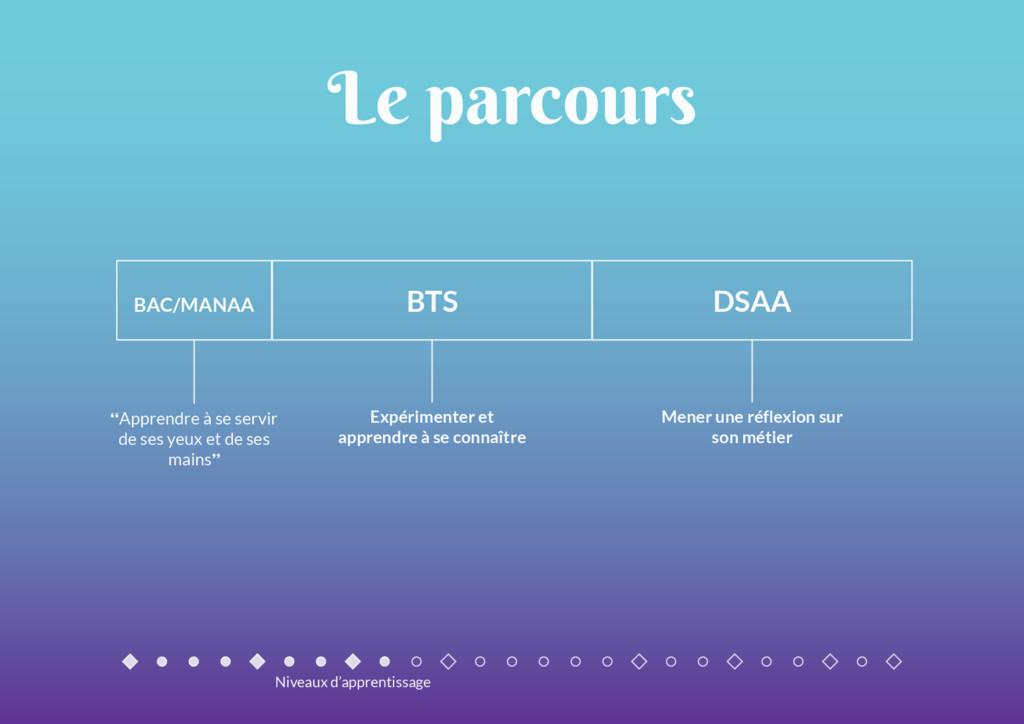 """BTS DSAA BAC/MANAA Le parcours """"Apprendre à se ..."""